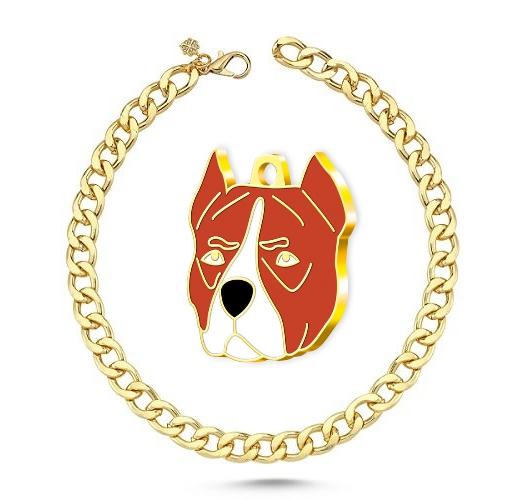 Altın Kaplama Pitbull Köpek Künyesi (Kahverengi)+ Kedi Köpek Kolyesi - Gold