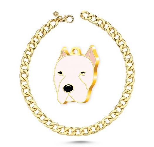 Altın Kaplama Dogo Argentino Köpek Künyesi+Gold Kolye